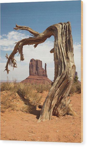 Monument Valley Desert Tree Wood Print