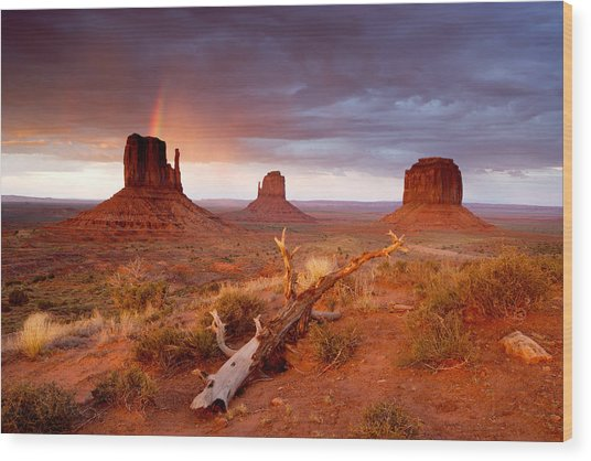 Monument Valley Rainbow Wood Print by Eric Foltz