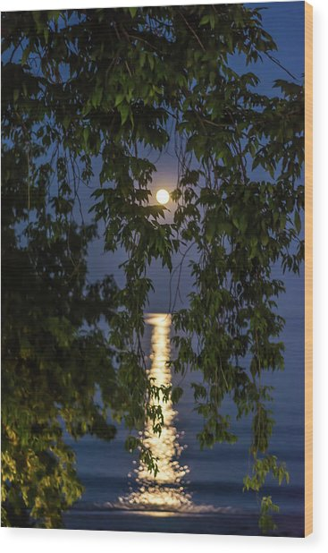 Moon Curtain Wood Print