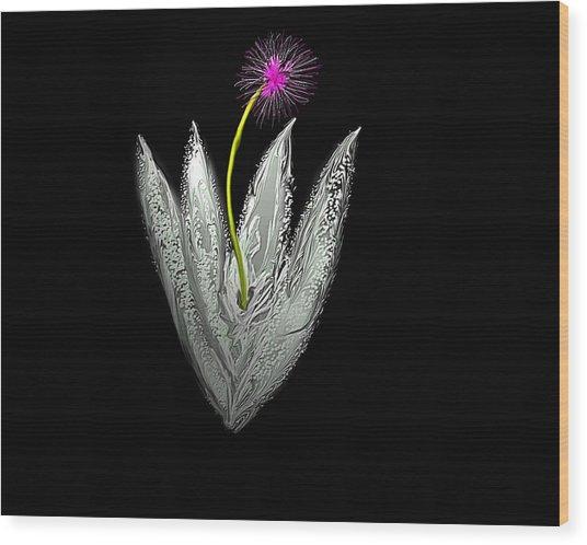 Moon Flower Wood Print by John Mueller