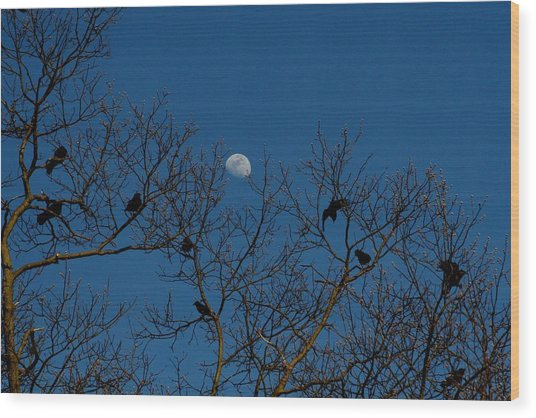 Moon In The Sky 3 Wood Print