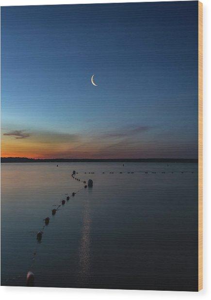 Moon Over Cayuga Wood Print
