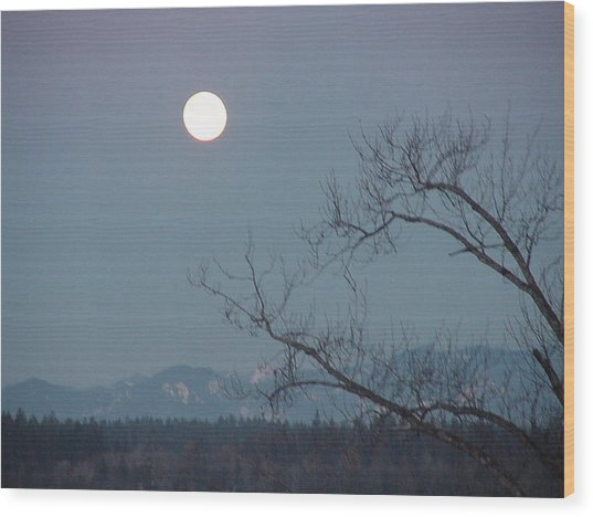 Moon Over The Olympics Wood Print by Gregory Smith