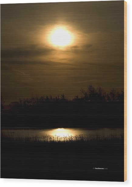 Moon Over The Pond Wood Print