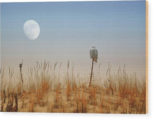 Moon Rise Snowy Owl Wood Print