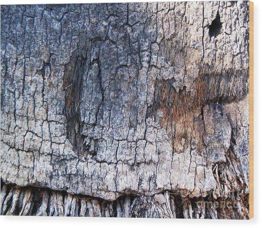 Moon Wood Print