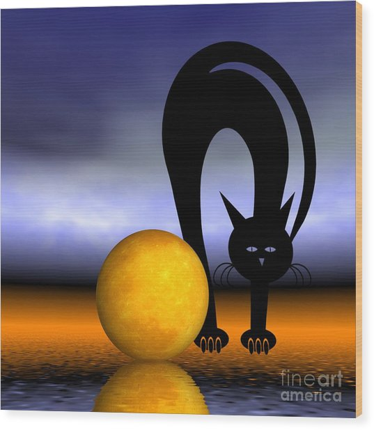 Mooncat's Play With The Fullmoon Wood Print
