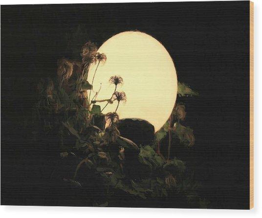 Moonglow Thistles Wood Print