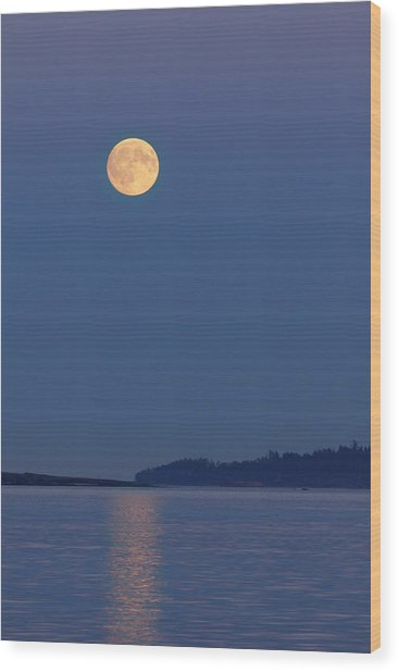 Moonlight - 365-224 Wood Print