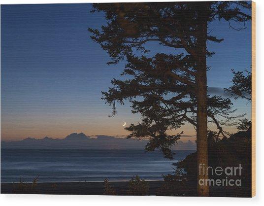 Moonlight At The Beach Wood Print