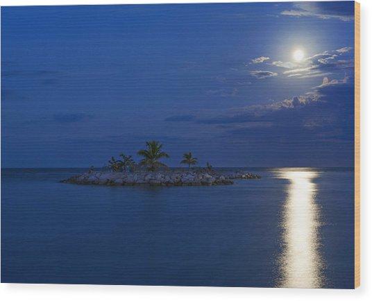 Moonlight Island Wood Print