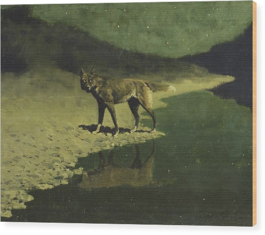 Moonlight, Wolf Wood Print