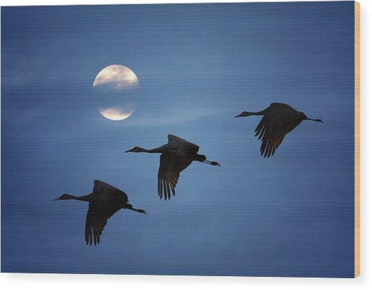 Moonlit Flight Wood Print
