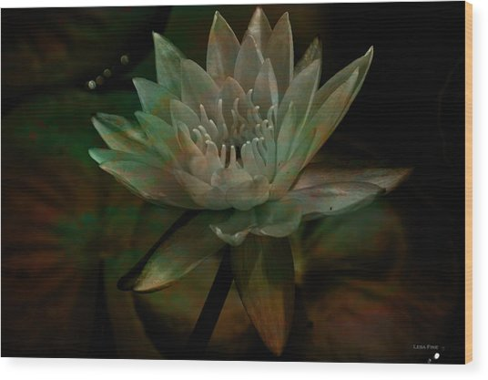 Moonlit Water Lily Wood Print