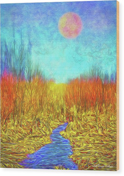 Moonlit Wilderness - Colorado Stream In Boulder County Wood Print