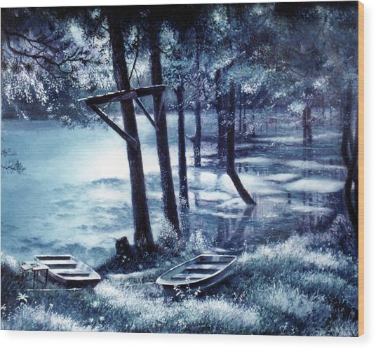 Moonlite On Village Creek Wood Print