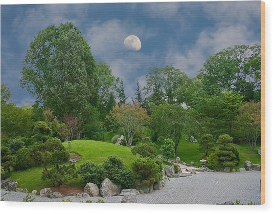 Moonrise Meditation Wood Print