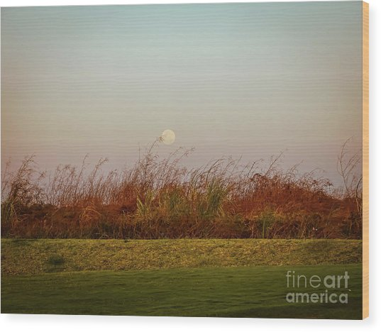 Moonscape Evening Shades Wood Print