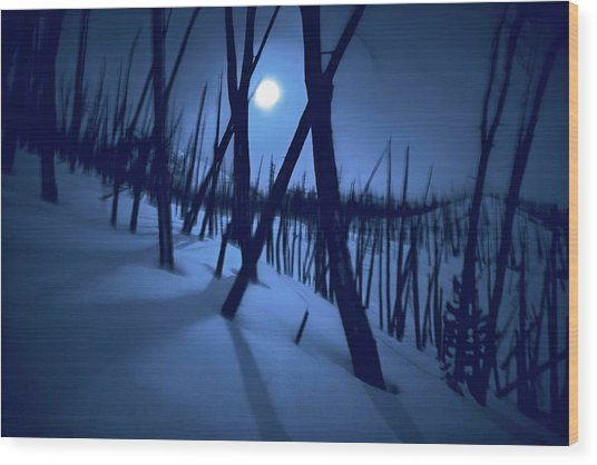 Moonshadows Wood Print