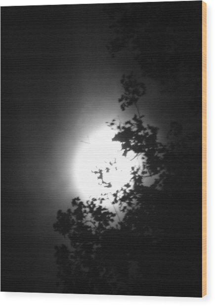 Moonshine Through The Leaves Wood Print