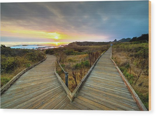 Moonstone Beach Path Wood Print