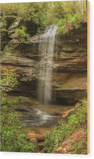 Moore Cove Falls Wood Print