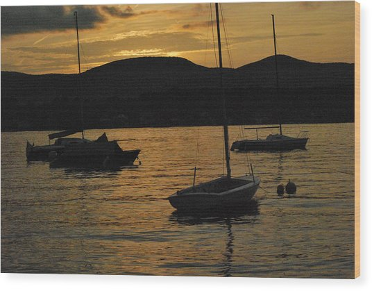 Moored Wood Print by Peter Williams