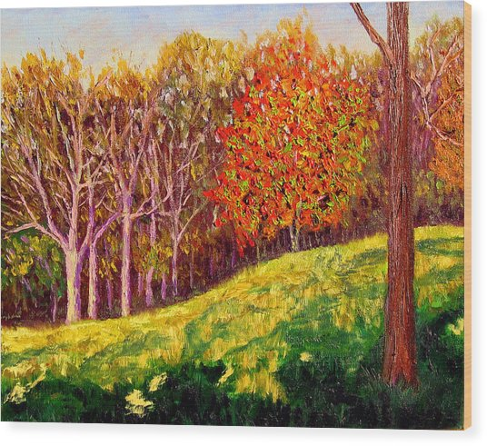 Mooresville October Wood Print by Stan Hamilton