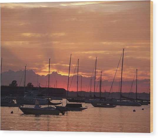 Mooring Field Sunset Wood Print by Walter Taylor