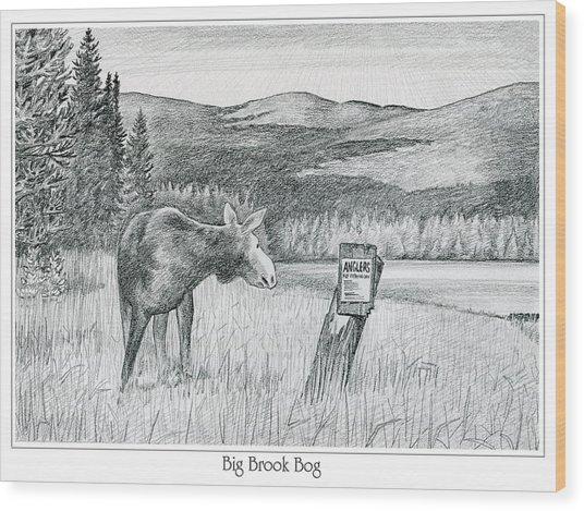 Moose At Big Brook Bog Wood Print