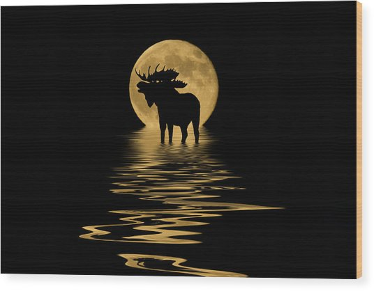 Moose In The Moonlight Wood Print