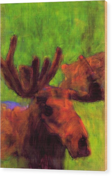 Moose Moments Wood Print