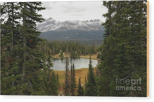 Moosehorn Lake Wood Print