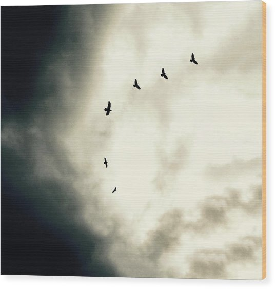 Big Sky Crows Wood Print