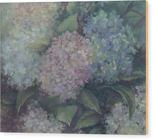 More Hydrangeas Wood Print