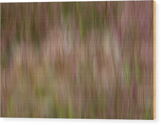 More Lake Grasses Wood Print