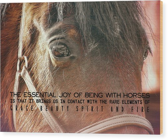 Morgan Horse Quote Wood Print by JAMART Photography