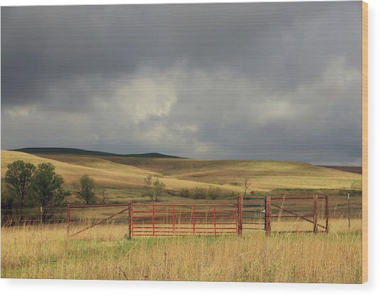 Morning At The Tallgrass Prairie Wood Print