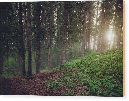 Morning Breaks Wood Print