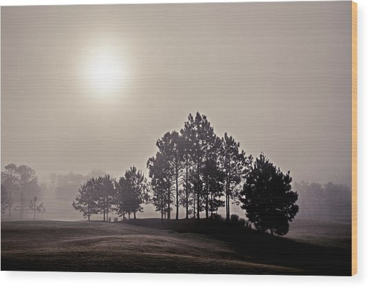 Morning Calm Wood Print