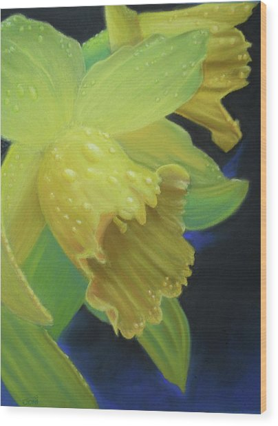 Morning Daffodil Wood Print by Joan Swanson