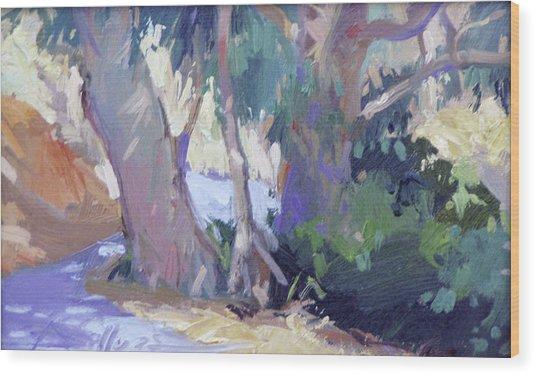 Morning Dance - Catalina Island Wood Print