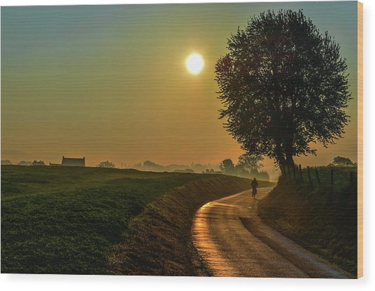 Morning Dew In Color Wood Print