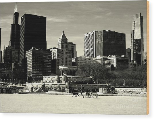Morning Dog Walk - City Of Chicago Wood Print