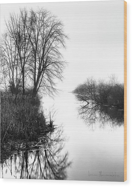 Morning Fog - Inlet, Lake Logan Wood Print