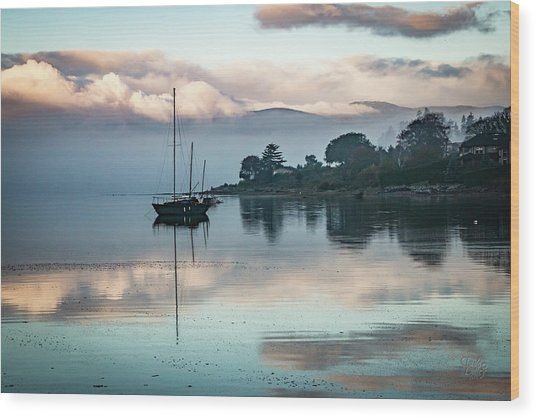 Morning Fog Is Lifting-2 Wood Print