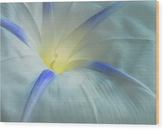 Morning Glory Wood Print by Gene Sizemore