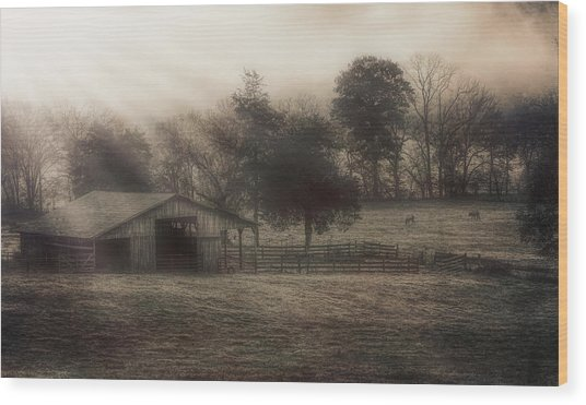 Morning In Boxley Valley Wood Print