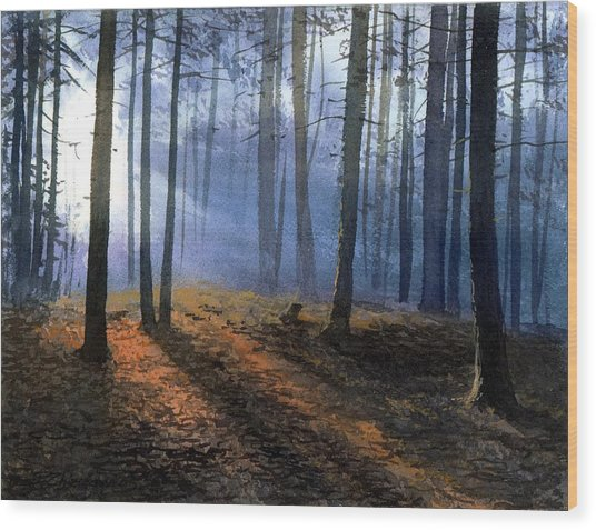 Morning In Pine Forest Wood Print