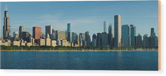 Morning Lakefront Wood Print by Donald Schwartz